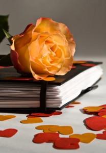 rose-auf-tagebuch